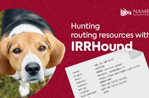 Namex IRRHound